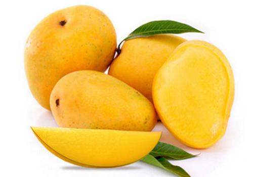 expensive alphonso mango