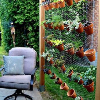 different varieties of vertical garden
